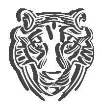 Tigres [de Bengala]